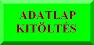 Belépés az adatlapkitöltő rendszerbe